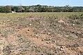 Araguainha - State of Mato Grosso, Brazil - panoramio (1110).jpg