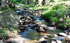 Arroyo Garganta de la Yedra (31061424068).jpg