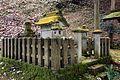 Asakura Yakata of Ichijodani Asakura Family Historic Ruins06n4592.jpg