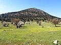 Asar dağının doğu arkası - panoramio.jpg