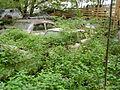 AutofriedhofGuerbetalInBueschen3.JPG