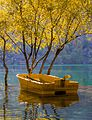 Autumn Colors and Boat.jpg