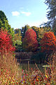 Autumn Colour @ Hillier Gardens (4022259099).jpg