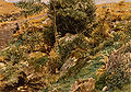 Autumn in the Welsh Hills by George Price Boyce, RWS.jpg