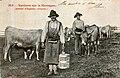 Aveyron - Vacherie sur la montagne 3.jpg
