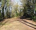 Avon & Glos. Railway. - panoramio.jpg
