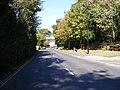 B1438 Snowdon Hill, Wickham Market - geograph.org.uk - 1501421.jpg