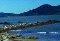 BALNEÁRIO CAMBORIÚ (Pontal Norte), Santa Catarina, Brasil by Nivaldo Cit Filho - panoramio (10).jpg