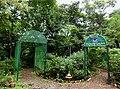 BNHS Butterfly Garden Image by Dr. Raju Kasambe DSCN7664 (2).jpg