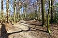 Baarn - Kasteel Groeneveld - IJskelder Walk 6 - In the back IJskelder.jpg