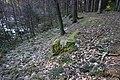 Babice - prostor zaniklé vsi Janovičky (též Janovice) (14).jpg