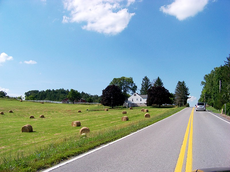 File:Bales of hay by the road - panoramio.jpg