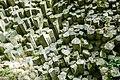 Basaltprismenwand am Gongolfsberg 03.jpg
