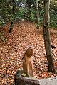 Basildon Park (6320513606).jpg