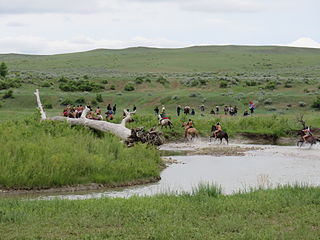 Little Bighorn River river in the United States of America