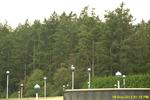Bc rueckreise 015 swartz bay tannenwald.png