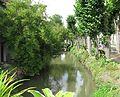 Beaumont du Gâtinais le Fusain.jpg