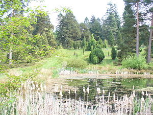 Bedgebury National Pinetum - Image: Bedgebury Lake