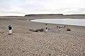 Beechey Island 010-AXW 0890.jpg