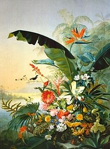 Beert I, Osias - In the Tropics.jpg