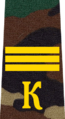 Belarus Military Academy—Internal Troops Department—03 Cadet-Sergeant rank insignia (Camouflage).png