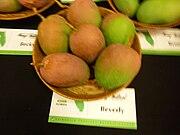 Beverly mango.JPG