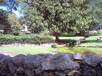 Cedartown, Georgia - Cedartown's historic Big Spring provides water to 10,000 people.