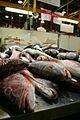 Billingsgate Fish Market 2011.jpg