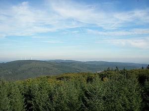 Bingen Forest - View from the Hochsteinchen over the Hunsrück to Bingen Forest
