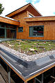 Bisley Green Shop roof 4.jpg
