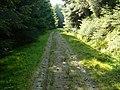 Blairmore Farm - Kilmun Track - geograph.org.uk - 458334.jpg
