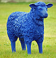 Blue Sheep 03.jpg