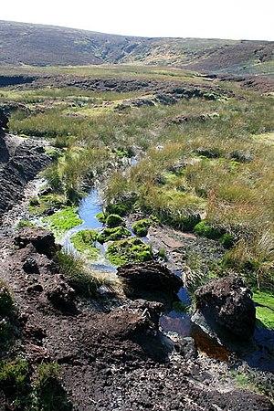 River Derwent, Derbyshire