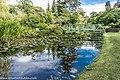 Botanic Gardens In Glasnevin (Dublin) (7951809214).jpg