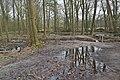 Boxtel - 2015 - panoramio (2).jpg