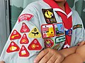 Boy scout badges (Singapore).jpg