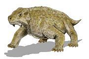 Bradysaurus_BW.jpg