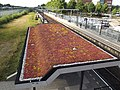 Breda-Prinsenbeek met sedumdak.jpg