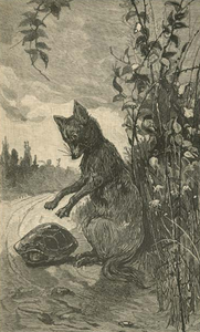 Brer Fox tackles Brer Tarrypin, 1881 no caption.png