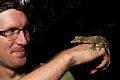 Brett with Uroplatus (15907026672).jpg