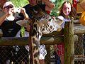 Brevard Zoo African Animals - Flickr - Rusty Clark (12).jpg