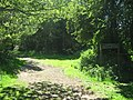 Bridleway into Pilots Wood - geograph.org.uk - 1331609.jpg