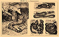 Brockhaus and Efron Encyclopedic Dictionary b49 082-1.jpg