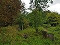 Brockley & Ladywell Cemeteries 20170905 102812 (47585748202).jpg