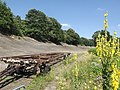 Brooklands north bank, 22 July 2012.jpg