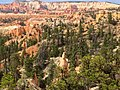 Bryce Canyon from scenic viewpoints (14700003283).jpg