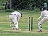 Buckhurst Hill CC v Dodgers CC at Buckhurst Hill, Essex, England 36.jpg
