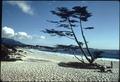 CALIFORNIA-MONTEREY BAY - NARA - 543303.tif