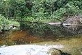 Caño Cucura, Mitu, Vaupes - panoramio.jpg