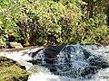 Cachoeira dos Pretos Na cachoeira, o viajante encontrará várias corredeiras e outras pequenas quedas d'água. - panoramio.jpg